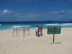 Original nest location, Pyramid Rock Beach, Kaneohe Marine Corps Base, Oahu HI